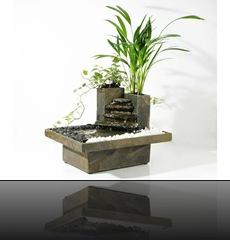 plante interieur zen